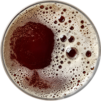 beer_transparent_02